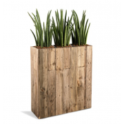 room-divider-hire-Berlin-plant-pot-flower-decor-prop-rental-event