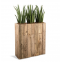 room-divider-hire-Berlin-plant-pot-flower-decor-prop-rental-event