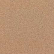 carpet-beige