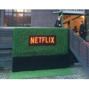 instant-hedge-hire-Berlin-rent-artificial-hedges-fake-grass-Germany